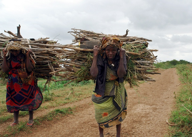 Farmers carry firewood back to their Shanlow village in Middle Shabelle Region