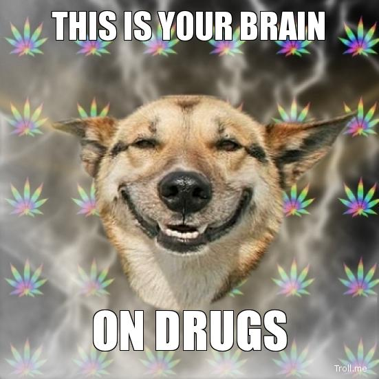 This Is Your Brain On Drugs